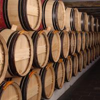 Conseils en investissement viticole.